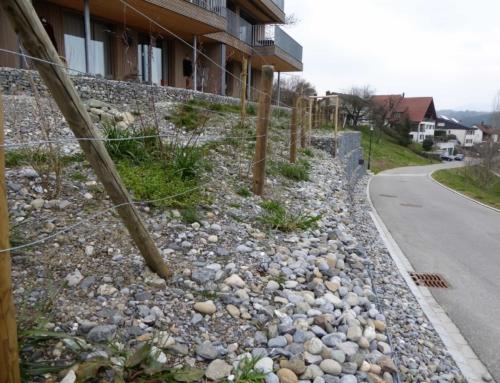 Ökologische Gartengestaltung Knonau