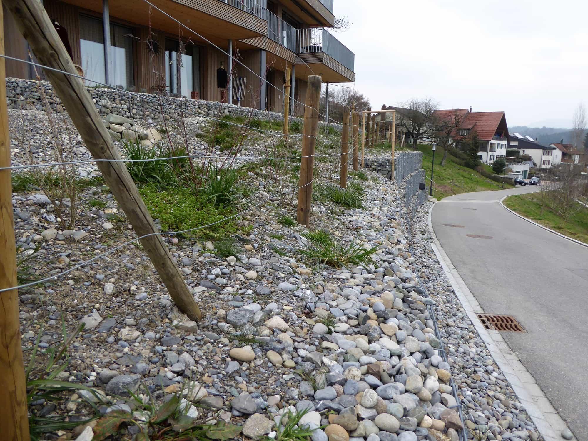 Ökologische Gartengestaltung mit Ruderalfläche