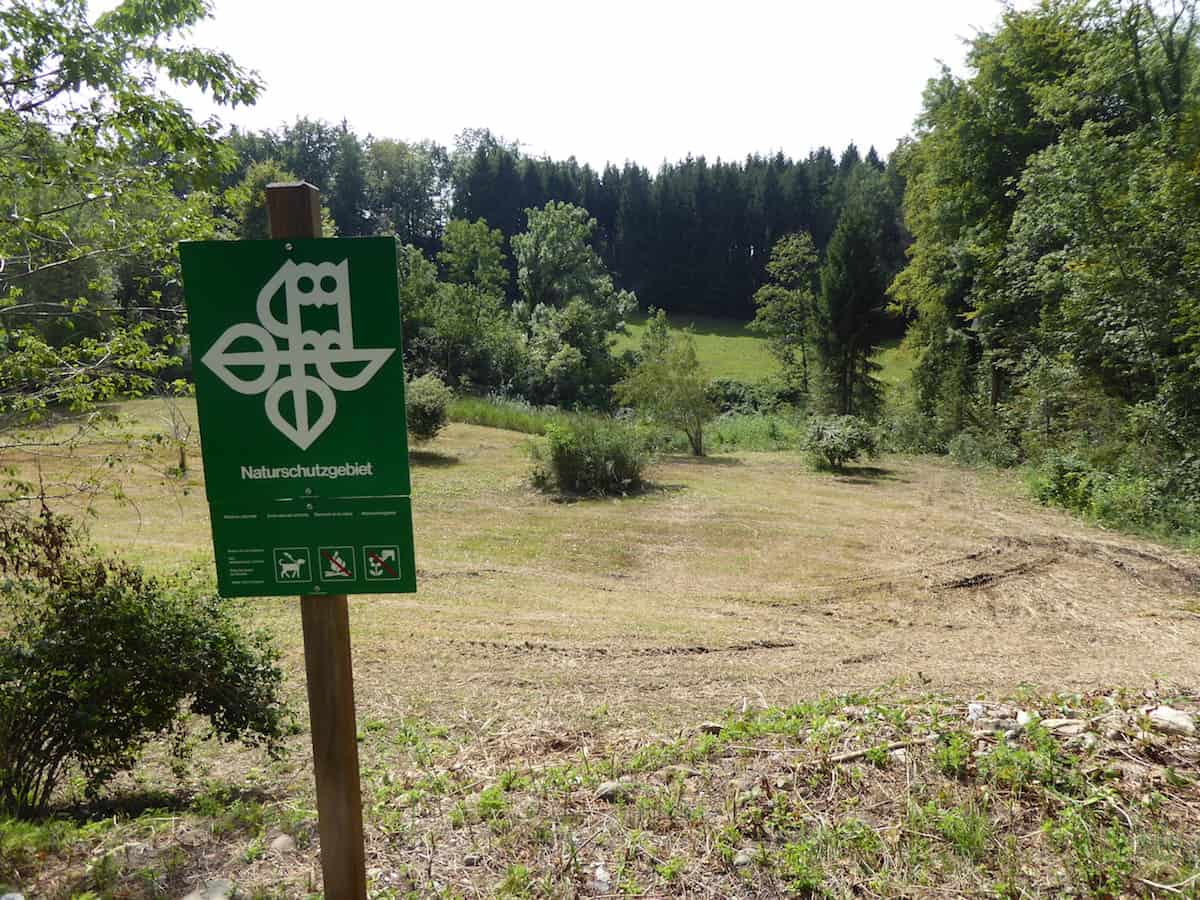 Naturschutzgebiet in Affoltern